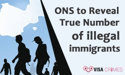 ONS to Reveal True Number of illegal immigrants