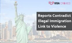 Reports Contradict Illegal Immigration Link to Violence