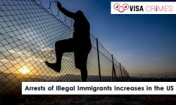Arrests of Illegal Immigrants Increases in the US