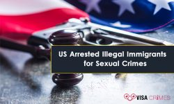 Two Illegal Immigrants Arrested in the USA for Sex Crimes Against Minors